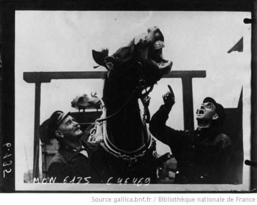 Acmé, Cheval hennissant ou plutôt riant suivant l'avis de ses palefreniers, 1933, Gallica