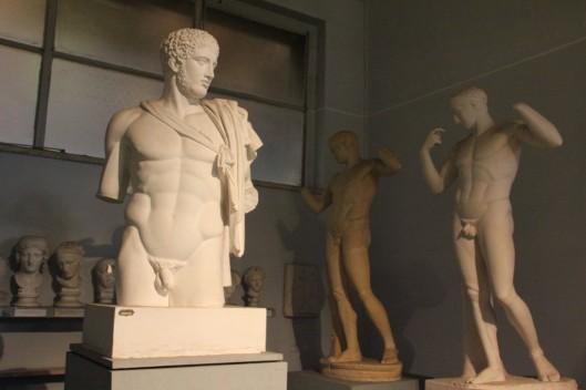 Museo Dell'Arte classica Sapienza (5)