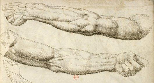 Pierre Jacques, Album de dessins d'après l'antique, exécutés à Rome [vers 1576], vue 162