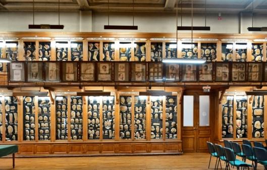 Musée des moulages dermatologique, Hôpital Saint-Louis. photo : AnaÏs Da Vitoria