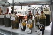 Matériel scientifique, réserves du musée national de l'Éducation, Rouen